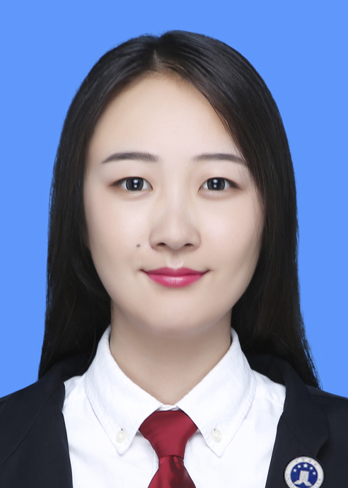 Lawyer Gao Linchen